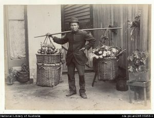 Chinese fruit and vegetable hawker c1895. National Library of Australia.