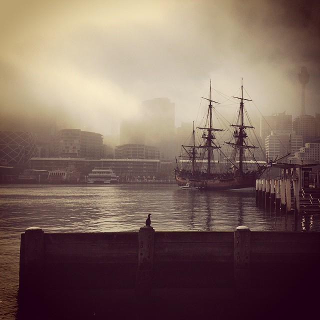 Foggy Endeavour 2