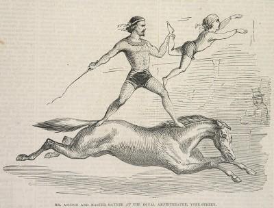 Ashton's equestrian act