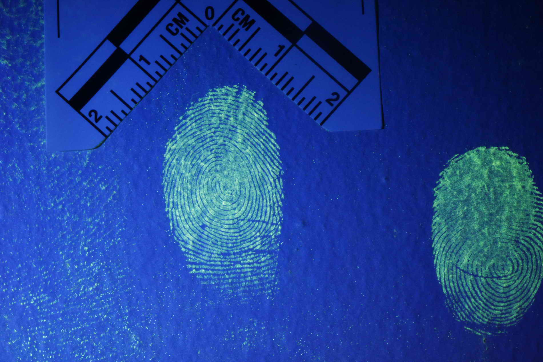 Fingerprints visible with the Polilight forensic lamp, image courtesy Rofin Australia Pty Ltd